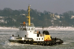 Wilhelmine (K240294-9)